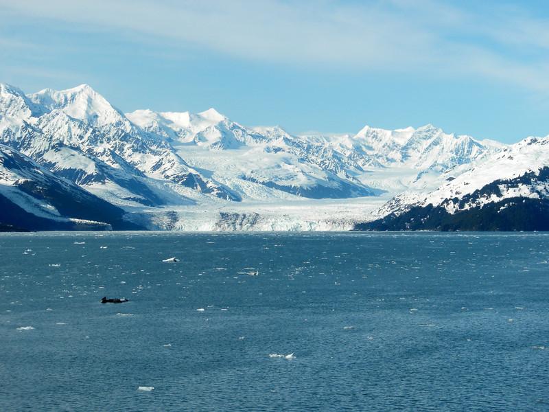 Alaska-6-01-3669-Glaciers.jpg