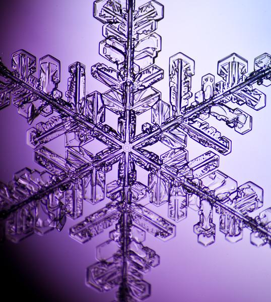 snowflake-3049-Edit.jpg