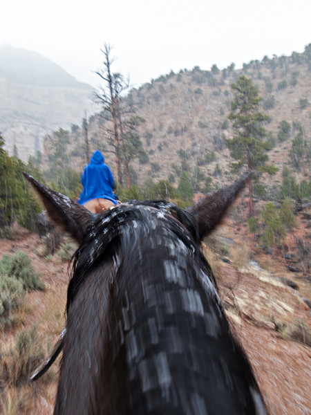 Ugh, wet snow and horses don't mix well.  Our friends were camping canoeing down the  green river.  A warm B&B awaited us.