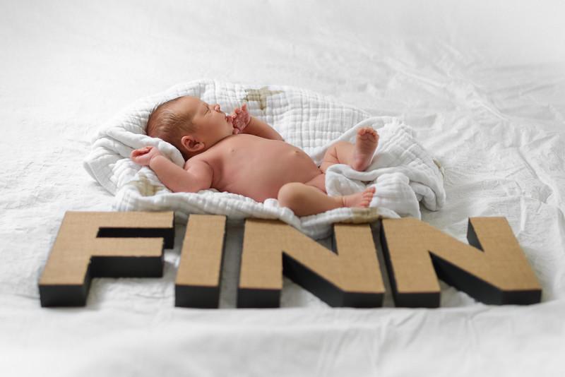 Finn7.jpg