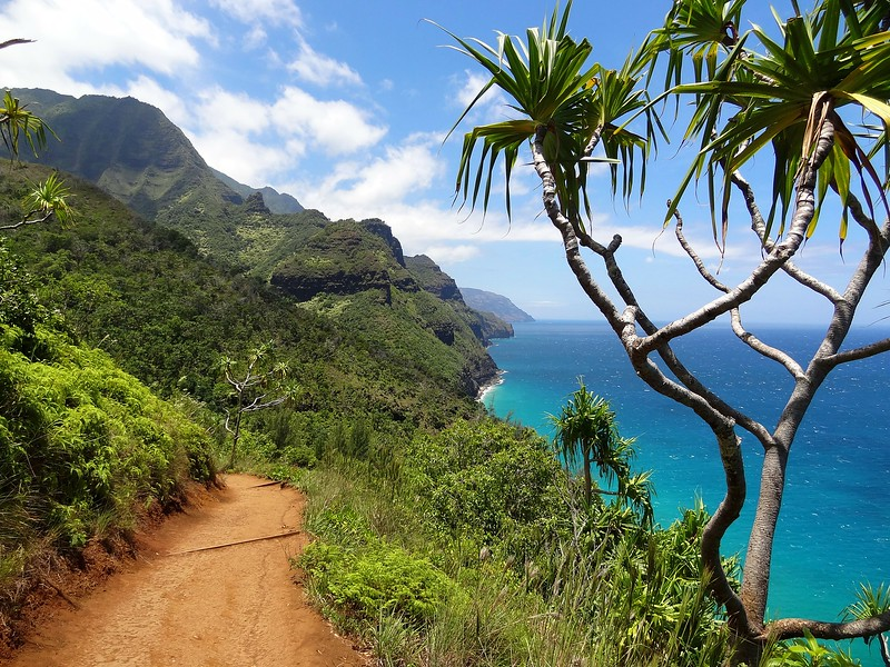 Best Maui Hikes: Ultimate Guide
