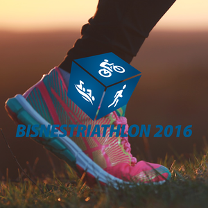 Business Triathlon 2016