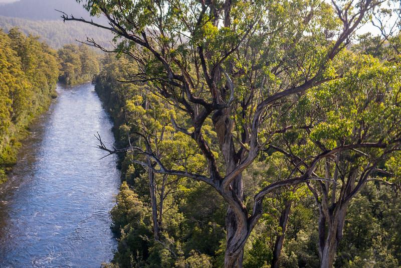 Tasmania-55.jpg