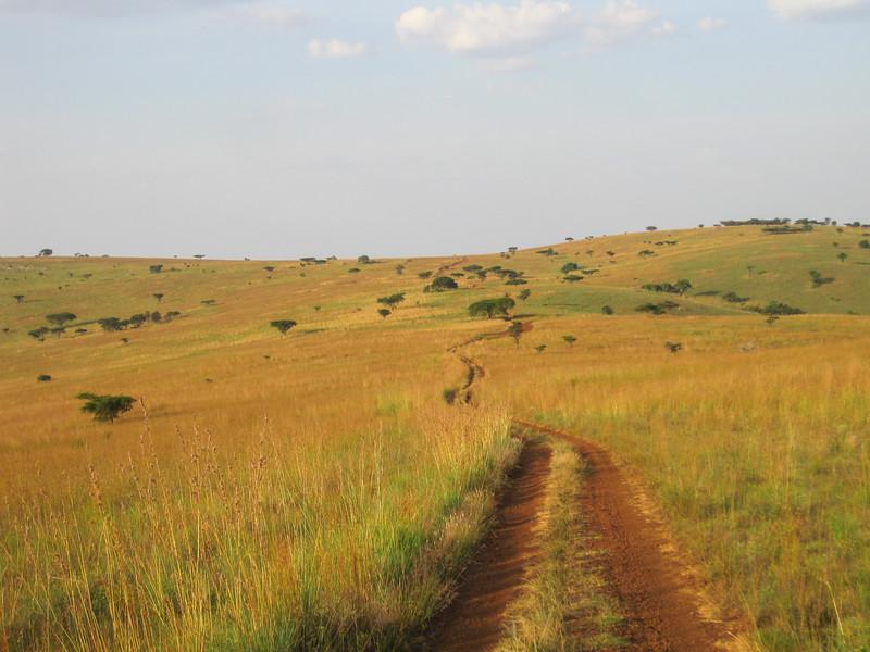 Rwanda_17_ixus-9393.jpg