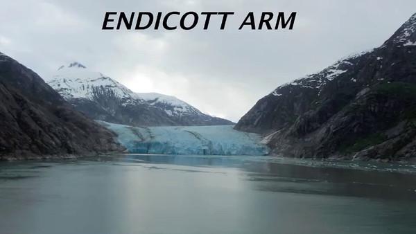 Endicott Arm