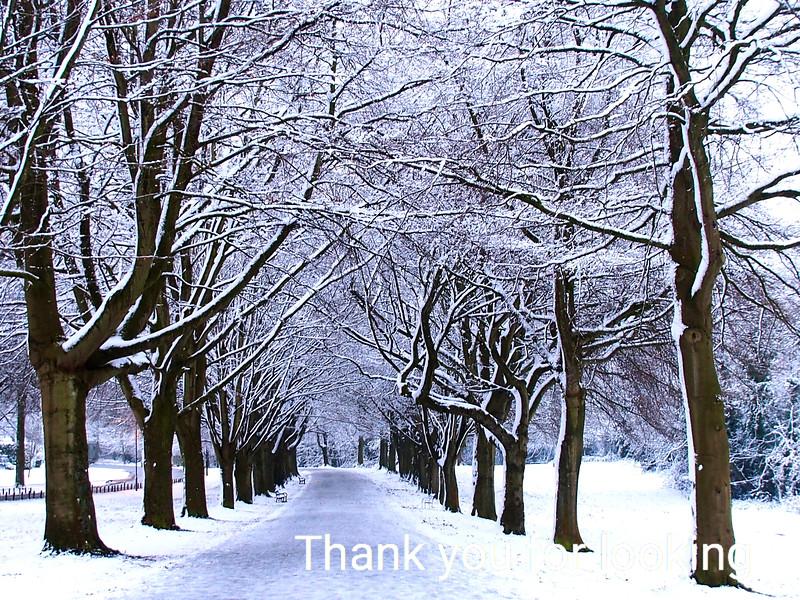 The Promenade in Winter :  Bristol
