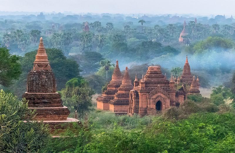 Jungle Temples
