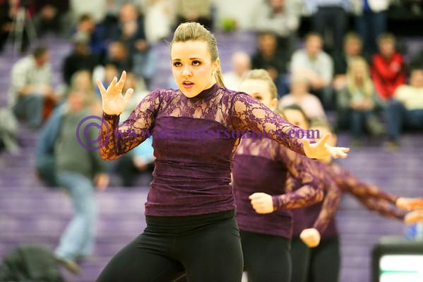 2015 01 20 RHS DANCE COMPANY HALFTIME ROUTINE