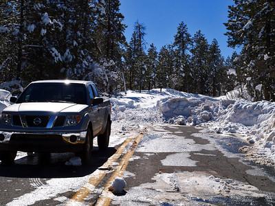 Alpine area Jan 2010