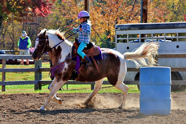 Soldiers Grove Wi: Horseshow Oct 10, 2020