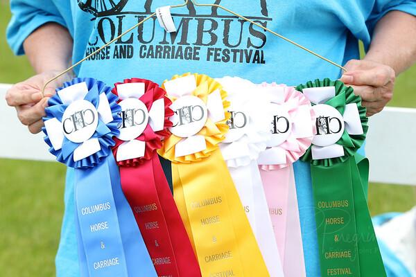 COLUMBUS CARRIAGE FESTIVAL 2014