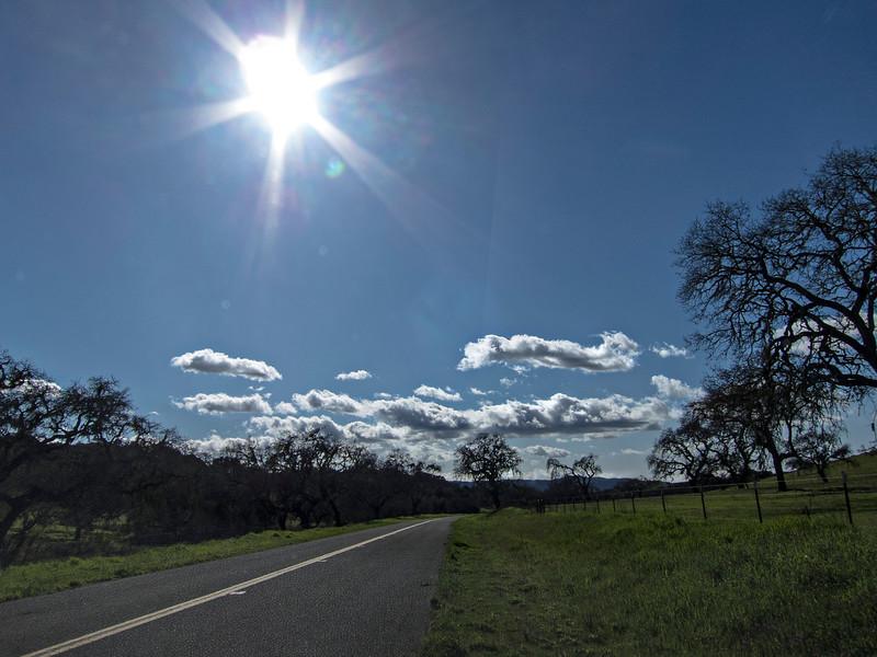 afternoon santa inez valley.jpg