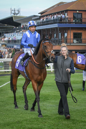 The Beverley Annual Badgeholders Maiden Fillies' Stakes