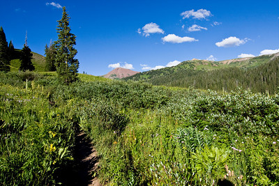 West Maroon Pass Trail 8-10-10