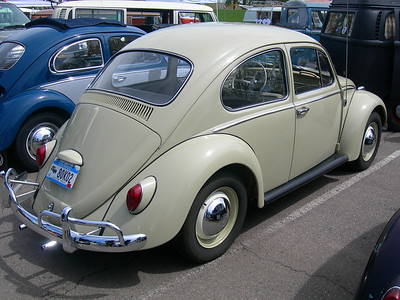2008 VW Shows