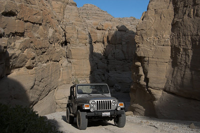 4/5/08 Anza Borrego - Fish Creek / Sandstone Canyon