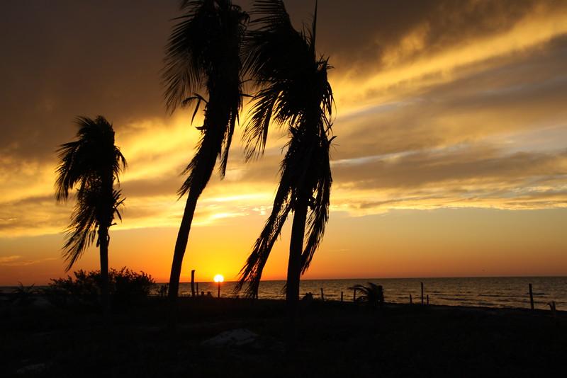 Holbox Island, Mexico  Feb2016 123.JPG