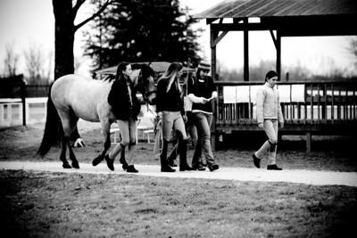 Rio Vista Horse Show 2010-02-20