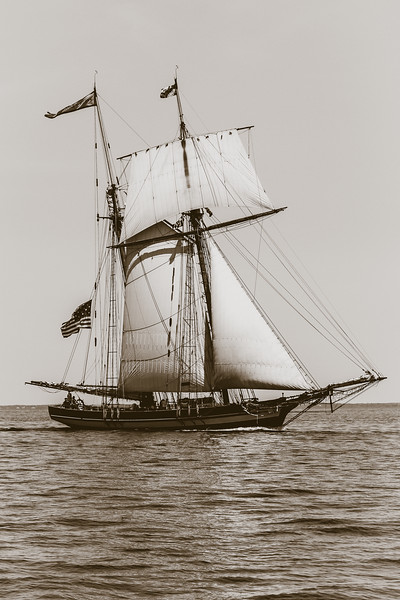 Pride of Baltimore - under sail