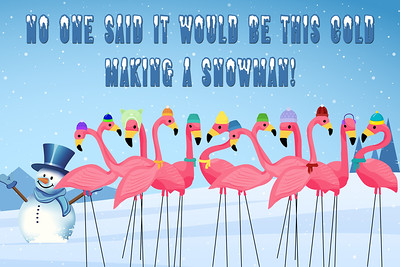 2020 Flamingo Fun