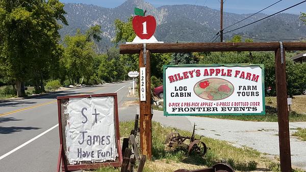 20150528 3rd Grade Field Trip to Riley's Apple Farm
