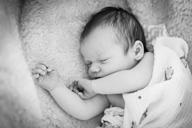 NewbornNash.2016.02.29-9.jpg