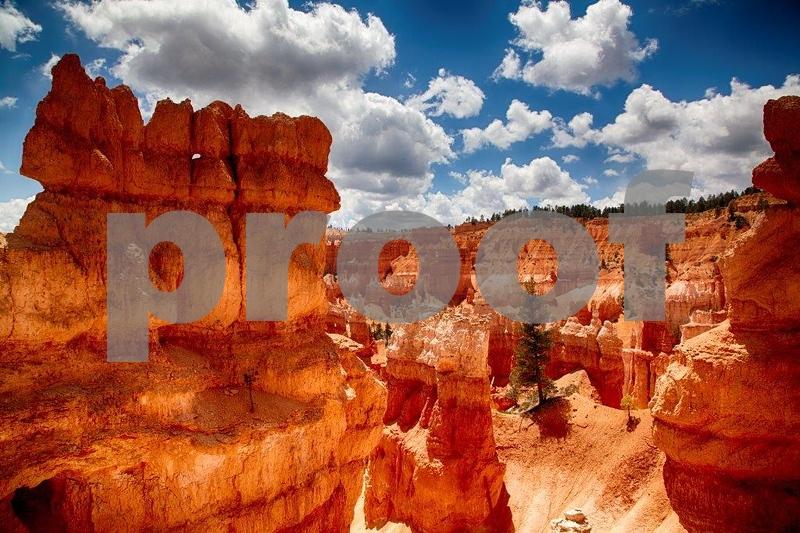 Navajo Trail 8063_HDR (2).jpg