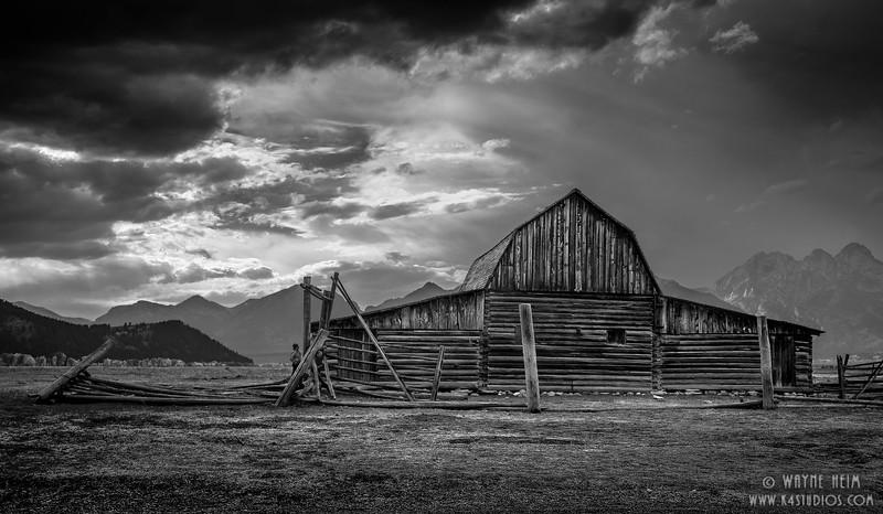 Still Standing in Black & white    Photography by Wayne Heim
