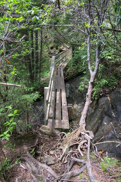 Mountains-to-Sea Trail -- 5,720'