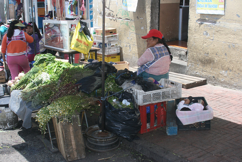 Herbs at the market in Quito