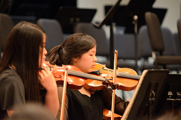 2013 Orchestra Spring Concert