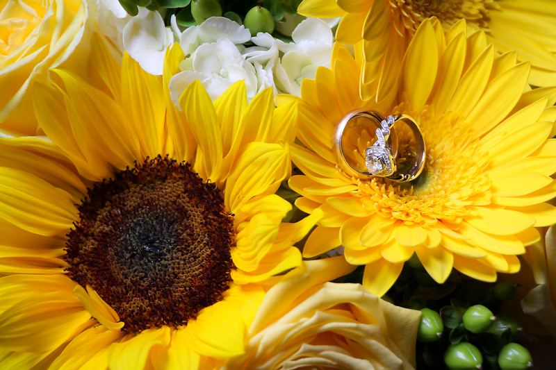 Breeden Wedding PRINT 5.16.15-60.jpg