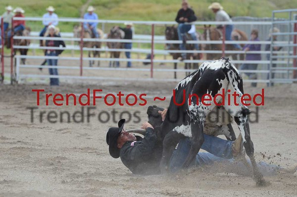 Stand Off Steer Wrestling