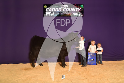 Caddo County Jr. Livestock Show