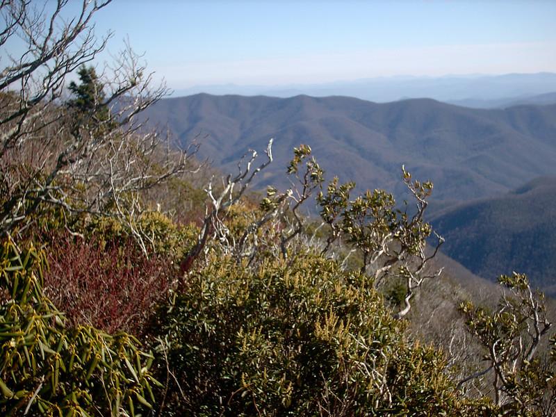 Cold Mountain Summit - 6,030'