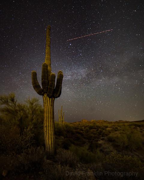 1804-Phoenix-0403.jpg