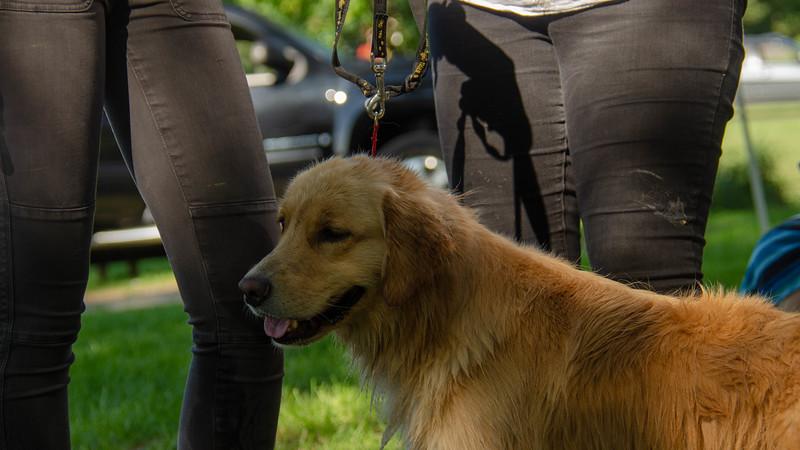 PuppyParty18-653.jpg