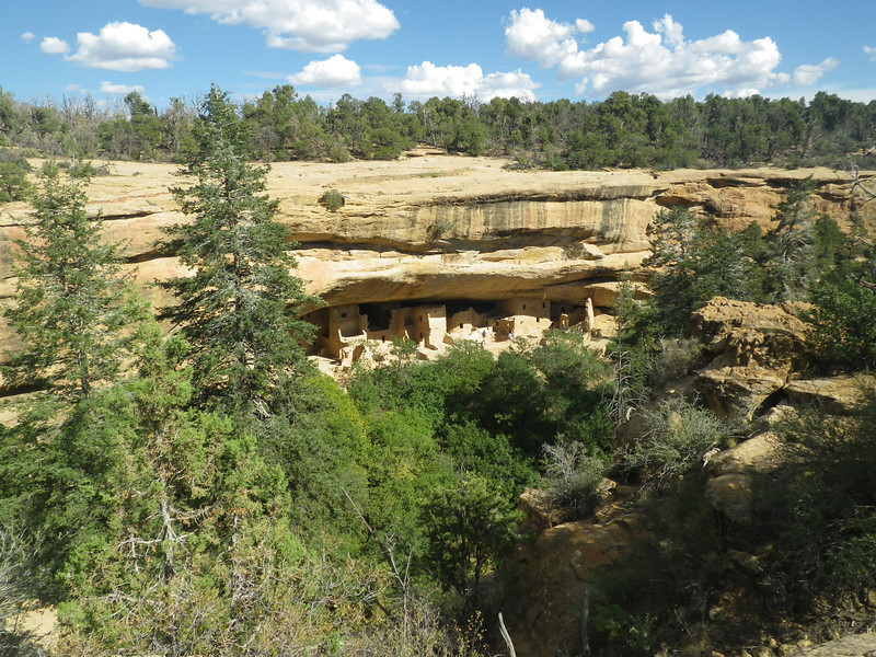 On my way back on Monday, September 2nd I spent a few hours visiting Mesa Verde National Park. Mesa Verde, Spanish for green table, offers a spectacular look into the lives of the Ancestral Pueblo people who made it their home for over 700 years, from A.D. 600 to 1300.  I visited Spruce Tree House and made Petroglyph Point Trail loop (2.4mi or 3.9km).