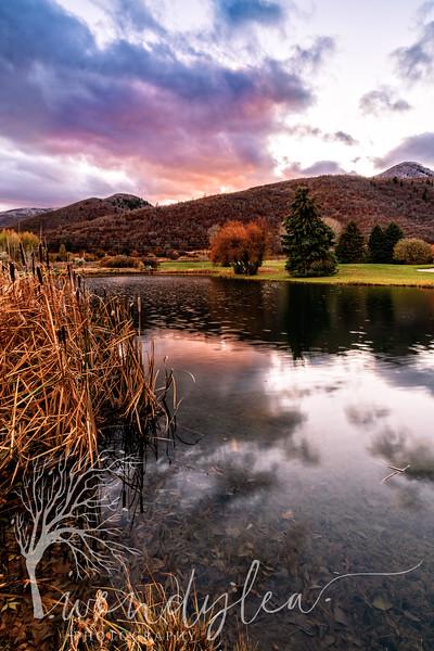 wlc golf course pond 182019.jpg