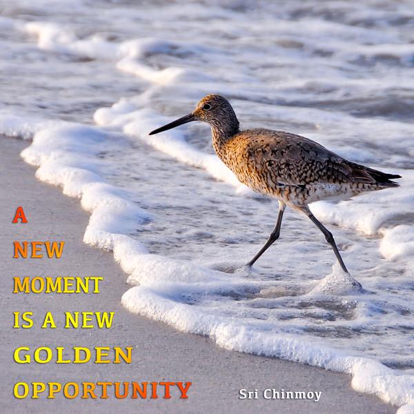 a new moment.jpg
