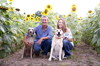 Caleb + Myranda Sunflowers 2019