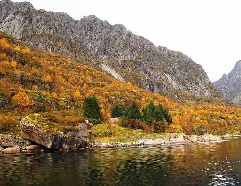 Cruise to Trollfjorden (6).JPG