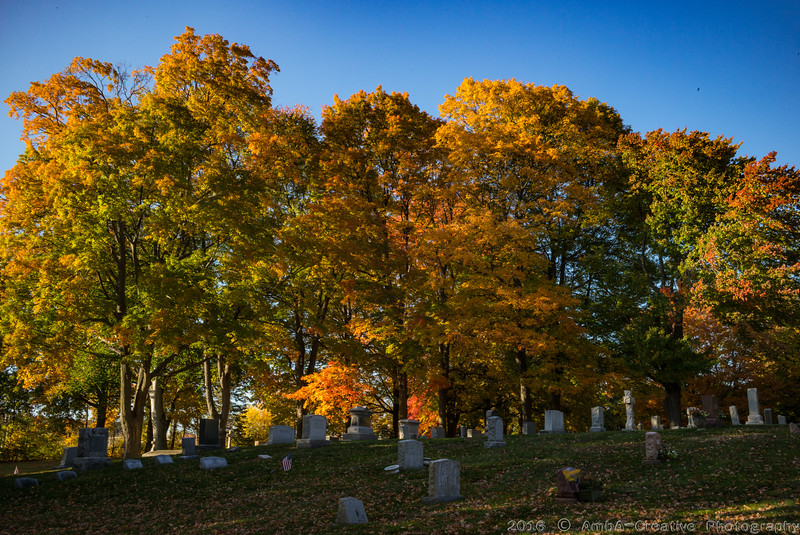 2016-10-19_Fall_Colors@MeridenCT_02.jpg