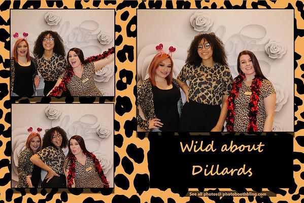Wild about Dillard's