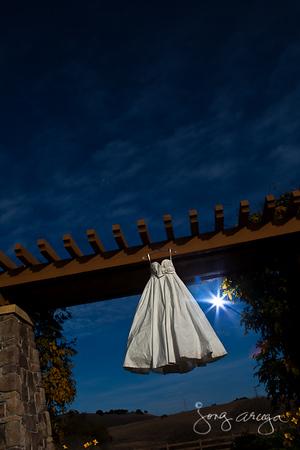 2011 Mitchie's Wedding Gown