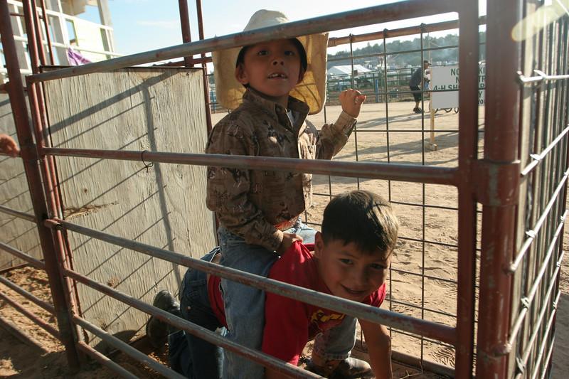 Rodeo  1173.jpg