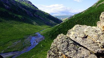 06-30 Fairbanks to Denali Park