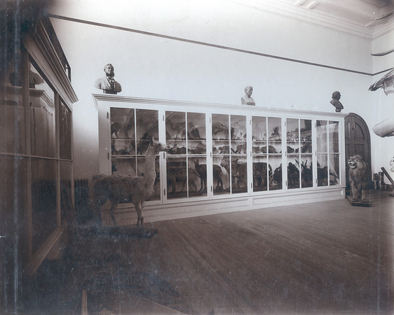 Palmer Hall Museum before 1924