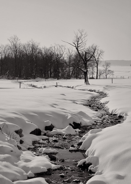 snow - frozen creek monotone(p, 226).jpg