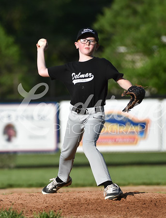 Delmar Little League 5-6-19